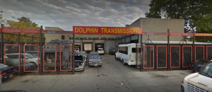 Dolphin Transmissions