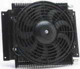 hayden-with-fan